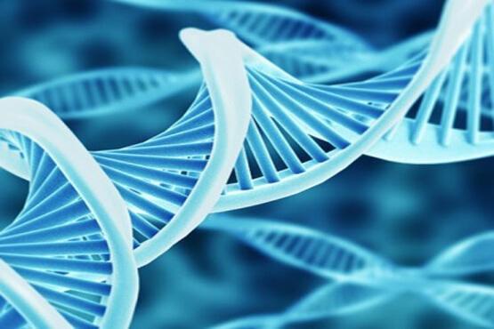 نانوذرات حامل ویراستار های ژن طراحی شدند ، پیشرفتی در تحقیقات زیست پزشکی
