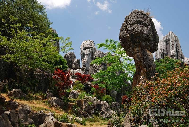 شیلین، جنگل سنگی چین