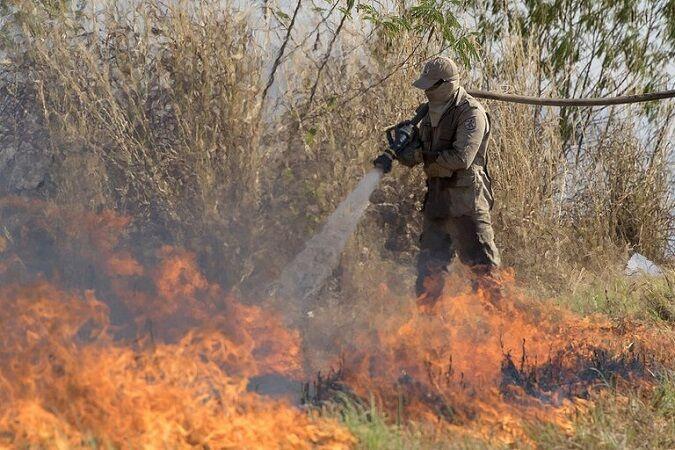 دولت بولسونارو، رکورد دار تخریب جنگل های آمازون
