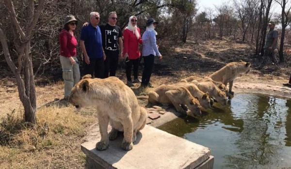 در تور آفریقای جنوبی نوروز 1400 از کدام جاذبه ها بازدید می کنیم؟